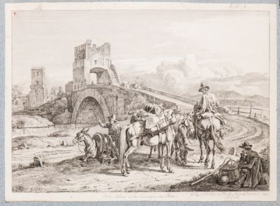 Ponte Salario, veduta generale