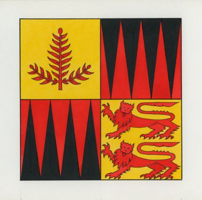 Stanford University. School of Earth Sciences. Flag