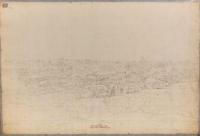 Panorama di Roma visto dal Palatino