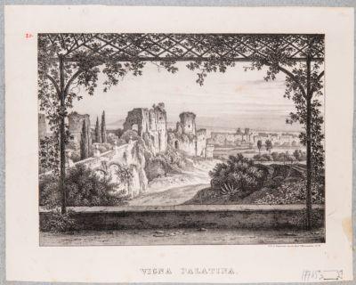 Palatino, resti della Domus Severiana con sfondo delle Terme Antoniane