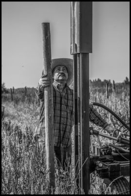 A member of Familias Unidas por la Justicia, driving posts on the land of the union's new cooperative, Tierra y Libertad