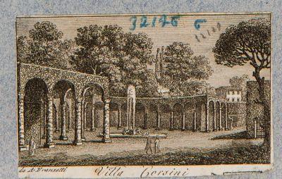 Villa e Palazzo Corsini. Porticato di verdura