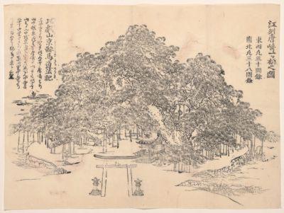 Gōshū Karasaki Hitotsumatsu no zu
