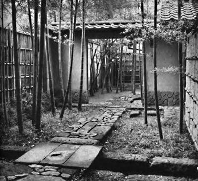 Japanese sideyard
