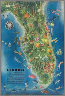 Full Map Of Florida.Official Road Map Of Florida 1950 Cartographic Material In