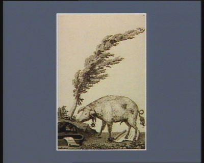[Le  Cochon (de Lapparent) piétine <em>la</em> <em>Constitution</em> de l'an trois, et tente de déterrer les symboles de <em>la</em> <em>royauté</em>, au pied d'un arbre de <em>la</em> liberté] [estampe]